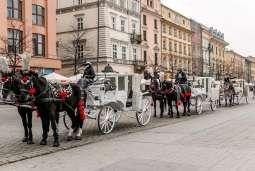 Krakowscy dorożkarze dla dzieci