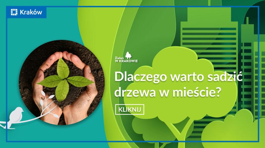 Kraków w zieleni