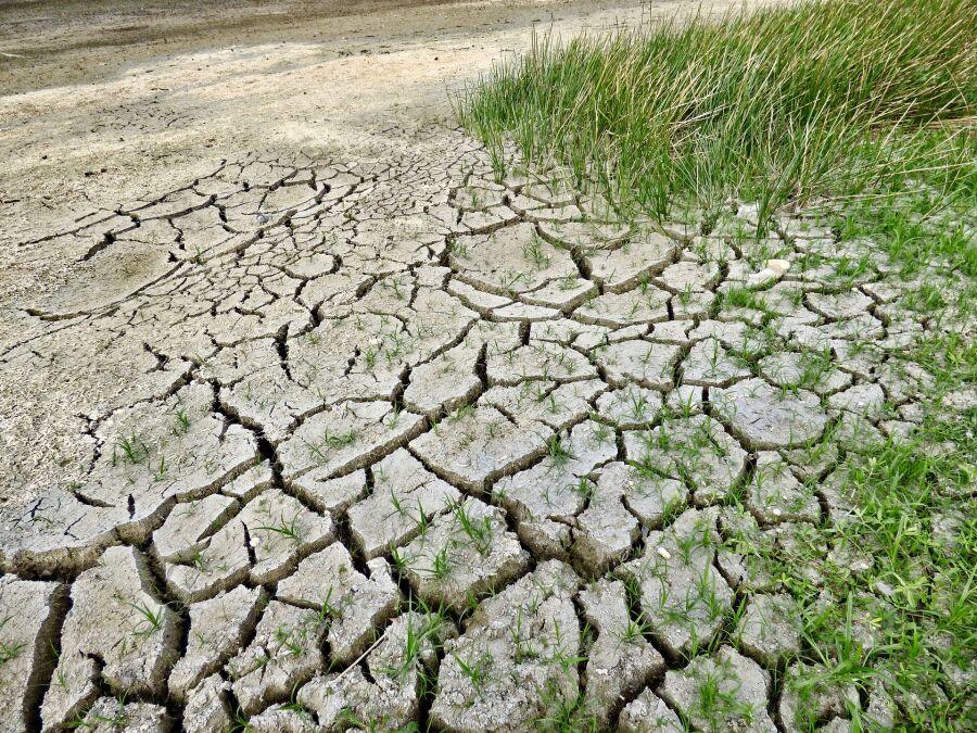 Zagrożenie suszą hydrologiczną